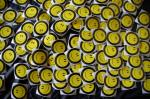 Hundreds of Smiles and Miles stickers laid out to dry.