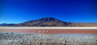 Chile_Atacama_Desert_Flamingos_Volcano_Salt_Lake_e72header