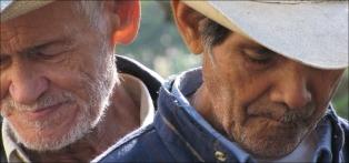 cowboys-297921-web ready-web ready
